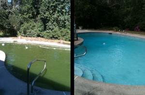 Pool Cleaning Jacksonville FL - Before and After